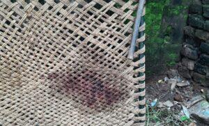 इसी खाट पर सोई थी बुजुर्ग महिला, जब उसके नाती ने गला रेत कर हत्या कर दी