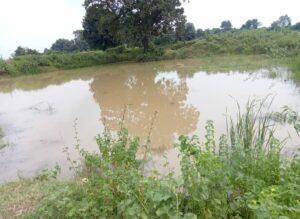 इसी तालाब में डूबकर हुई सातों बच्चियों की मौत